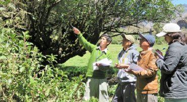 Taller docente en conservación del medio ambiente – Ancash