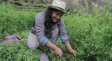 Mujeres en el agro: ¿cómo acortar las brechas que aún existen?