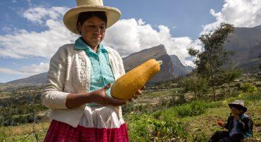 ¿Qué obstáculos enfrenta la mujer rural en el sector agropecuario?