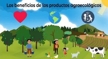 Los beneficios de los productos agroecológicos