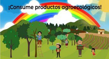 ¿Cómo reconocer un producto agroecológico?