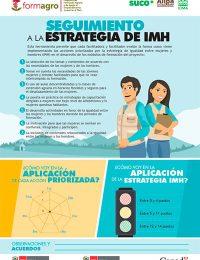 Seguimiento a la estrategia de IMH