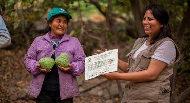 Certificación de la producción ecológica en la agricultura familiar