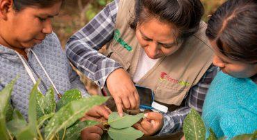 Proyecto FORMAGRO comparte 17 módulos de extensión técnica agropecuaria