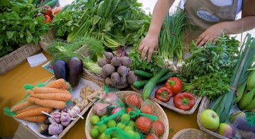 FORMAGRO y AGRORURAL realizarán un Mercado Solidario Agroecológico en el AAHH Lomo de corvina