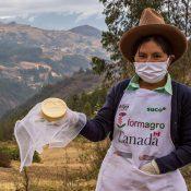 Red de productores agropecuarios de Rojruhuarco