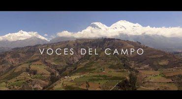 """""""Voces del Campo"""" Un documental que ofrece una mirada hacia el emprendimiento a través de la agricultura sostenible"""